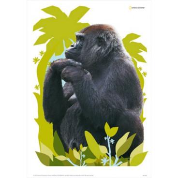 Decofun Αυτοκόλλητα Τοίχου Maxi Sticker Gorilla 41370