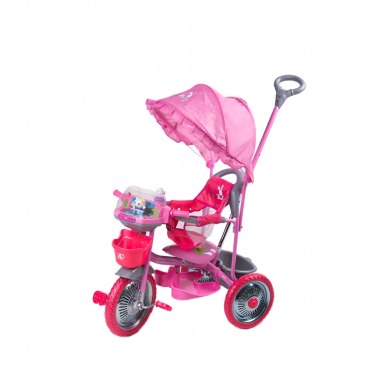 Smart Baby Ποδηλατάκι Τρίκυκλο DHS Merry Pink 338107210